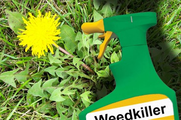 No Weedkiller Chemicals